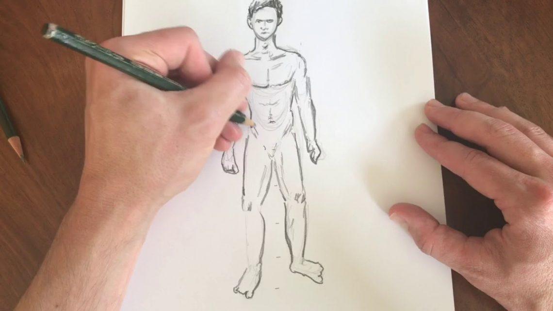 Menschen zeichnen / Aufbau Körper / Anatomie / Proportionen richtig ...
