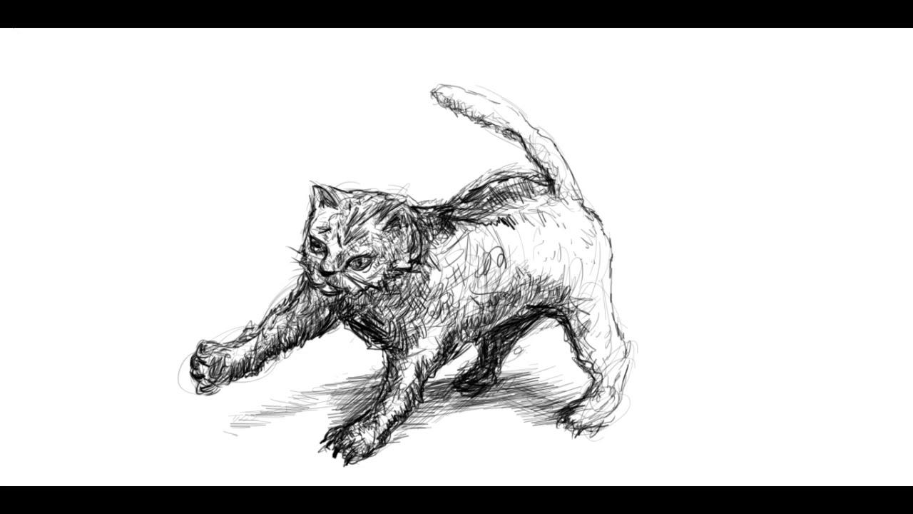 tiere zeichnen tipps zum zeichnen katzenvideo mit bleistift ivi education. Black Bedroom Furniture Sets. Home Design Ideas